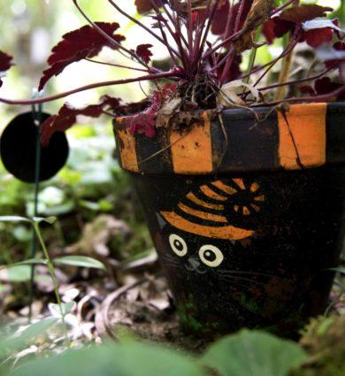 Pot de plante chat noir jardin de la sorcière