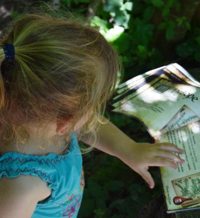 livre de recette du jardin de la sorcière