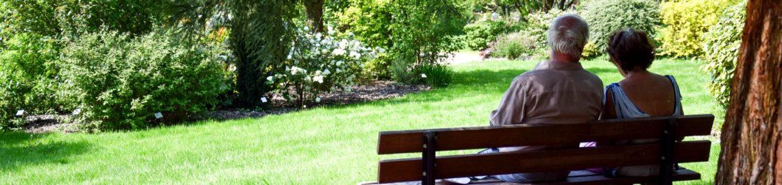 ombre jardins de brocéliande