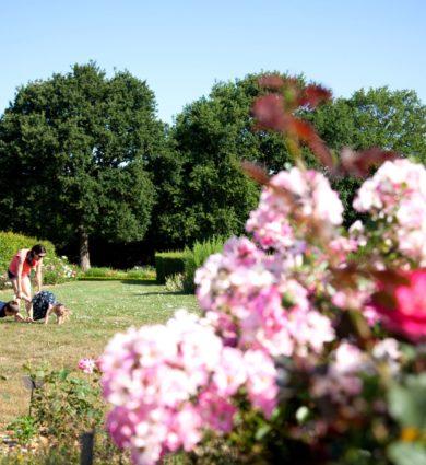 détente et amusement en famille aux jardins de brocéliande