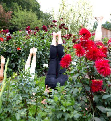 photo insolite pieds et fleurs