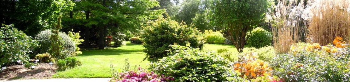 Jardin Botanique Brocéliande fleurs