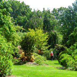 jardins à l'anglaise