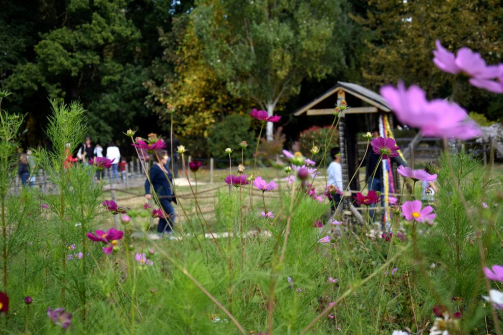 """Jardins de Brocéliande, parcours sensoriel """"Active tes sens"""""""